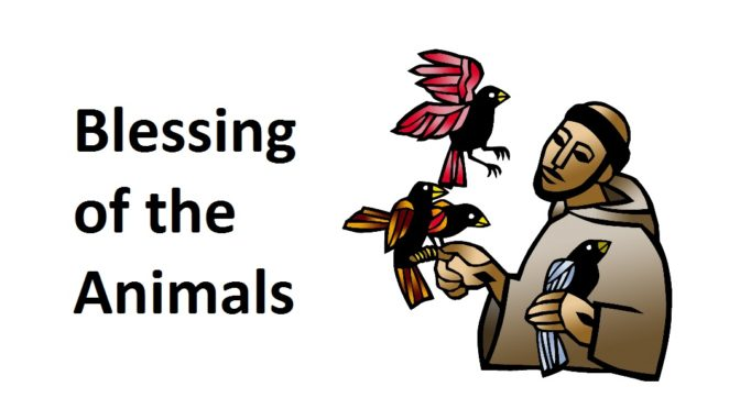 blessing_animals_banner